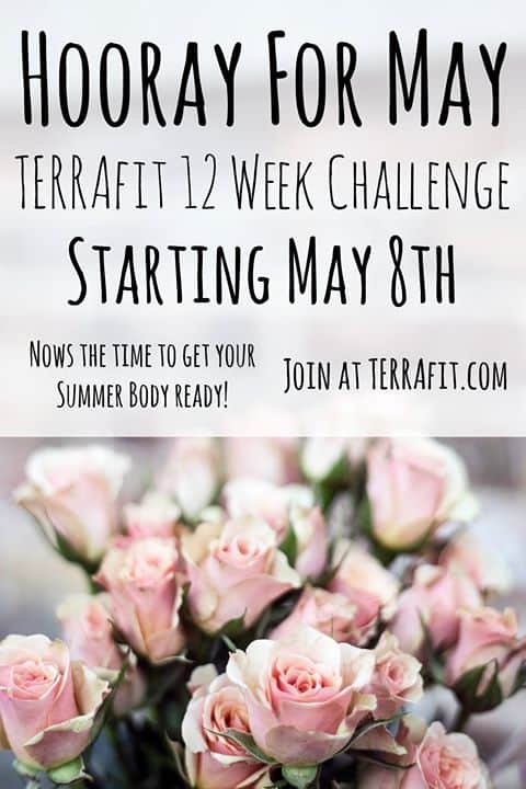 Review of TerraFit
