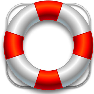 2-Lifesaver
