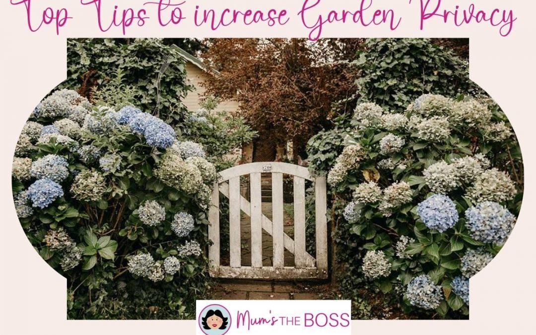 Top Tips to increase garden privacy