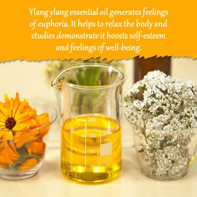 Aromatherapy for sleep Ylang Ylang