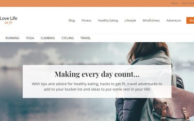 Making Money from a brand new Lifestyle Blog